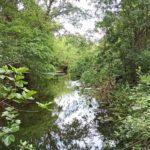 Vilafant - Riu Manol - Empordaturisme