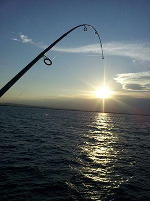 Activitats - Pesca - Creuersmarenostrum - lescala - empordaturisme
